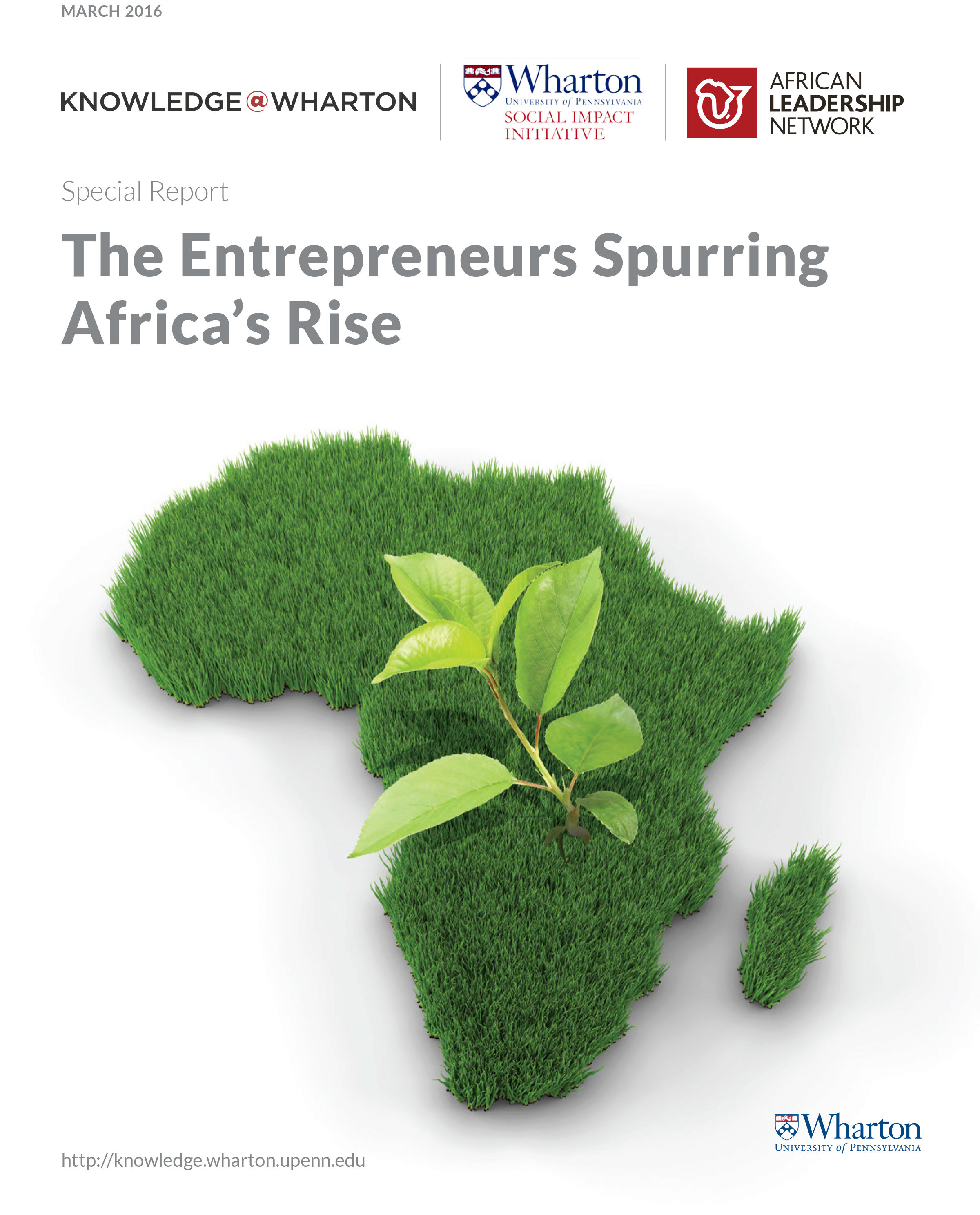 research and reports social impact the entrepreneurs spurring africa s rise